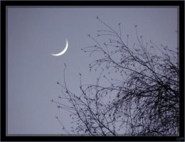 Moon crescent - 2 by J-Y-M