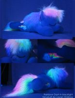 Sleepy Rainbow Dash Plushie 3 by GrowlyLobita