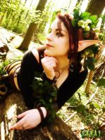 Wood Elf - Final by saray
