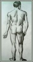Sketch - Backview of a Man by overfire