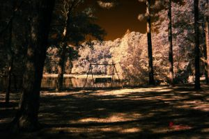 IR Bench Swing in the Park by WatchTower513
