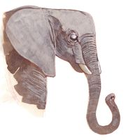 Elephant Thank You Card by CheiftainMaelgwyn