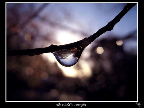 The World In A Droplet by NocturnalVampire