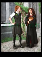 Our Hogwarts Years by Breogan