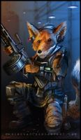 Fox Overwatch Operator by Shrinecat