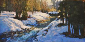 Winter At Fitzsimmons Creek by artistwilder