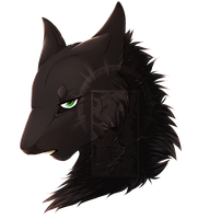 Hollyleaf Avatar by FuriDeamon