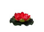 Png Flower by Moonglowlilly