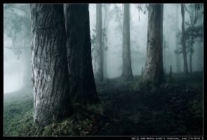 polipoli:trees.inthe.mist:2 by nick-d