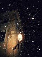 Snowflakes. And a street lamp. by pio1976