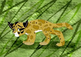 Serenade the Clouded Leopard by Amicarrow