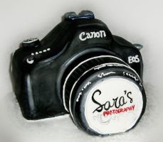 Canon Camera Cake by TiffsWickedCakes