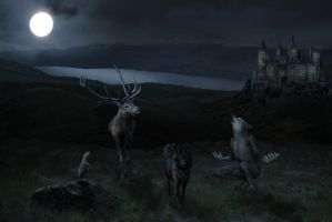 the marauders by shyduck