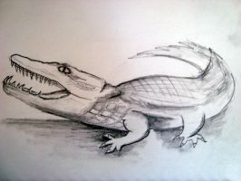 Beware of the Croc by Zuzmy