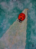 2010.05 - Lady bug on leaf by kostaskouk