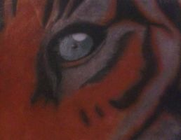 eye of the tiger!!! by B-Dazzlin