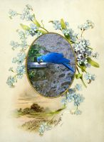 blue parrot and forgetmenots by gosiekd