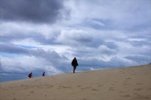 Sand Prowlers by rici66