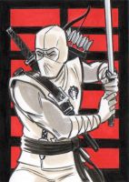 Storm Shadow Sketch Card by timshinn73
