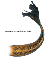 Mermaid Tail 08 (Orange Koi) by DeviantRoze