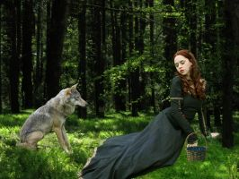 The Girl and The Wolf by mysterious-emerald