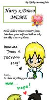 Draco x Harry MEME done by ozymandias93