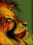 The Lion. by ThE-UnKO-LeMa