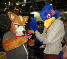 MCM - Star Fox and Falco by DreamBex