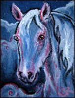 ACEO Albino Pony by estellea