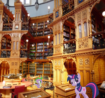 Twilight's Canterlot library by QTMark01