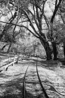 The Crooked Railroad by Smiling-Llama