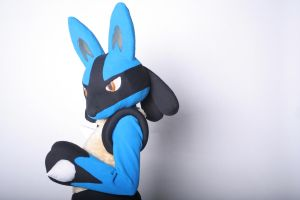 Lucario Swagger by scatnix