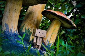 Danbo in Wonderland by simplyjinz
