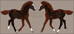 Nordanner Foal #9056 by soulswitch