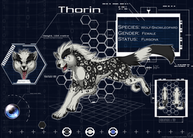 Thorin Sheet 2008 by ThorinFrostclaw