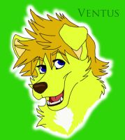 Puppy Ven Ven by AceKun16