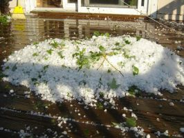 Hail Storm-Hail Pile Width by SilverPyroLupogryph