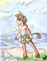 Beach Burro by Kaydolf