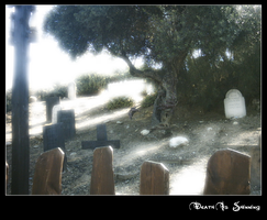 Death is shinning by Alquimia