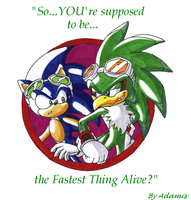 Thanks to Sonic X Sonic by adamis