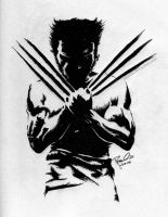 The Wolverine by LPSoulX
