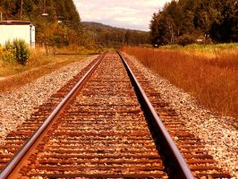 On the right Track.. by TearsofEndearment