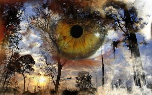 Fire Eye by CoryAmedia
