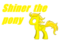 Shiner pony by DimetraPaywer