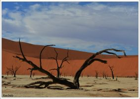The Dead Vlei by KlaraDrielle