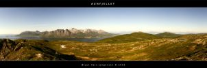 Aunfjellet Panorama by thurisaz