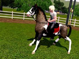Sims 3 Horse fun by Larafan2