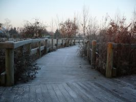 Winter bridge by Cat-in-the-Stock