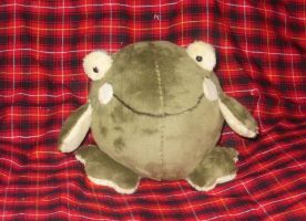 B. Looni Frog the Second by StitchyGirl