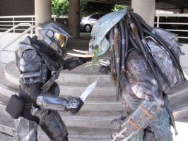 Halo vs. Predator by MrOreo123